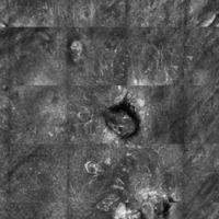 Malignes Melanom, Laser Scanning Mikroskopie: aufsteigende Spindelzellen und pagetoide Zellen in ...
